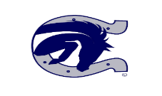 Image result for boerne champion high school